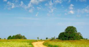 Что такое единое землепользование, как его преобразовать и совершить сделки купли-продажи или обмена