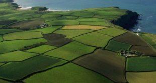 Что такое обременение земельного участка, как накладывается и как его снять