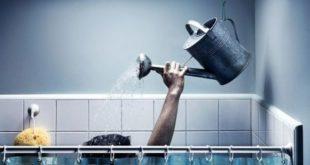 Что делать, если в квартире отключили горячую воду на долгое время